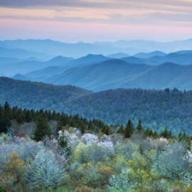 Asheville Convention and Visitors Bureau